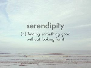 3666_serendipity
